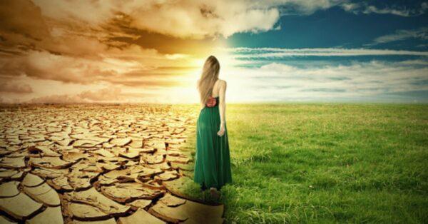 Got Desert? Green Pastures Await You!