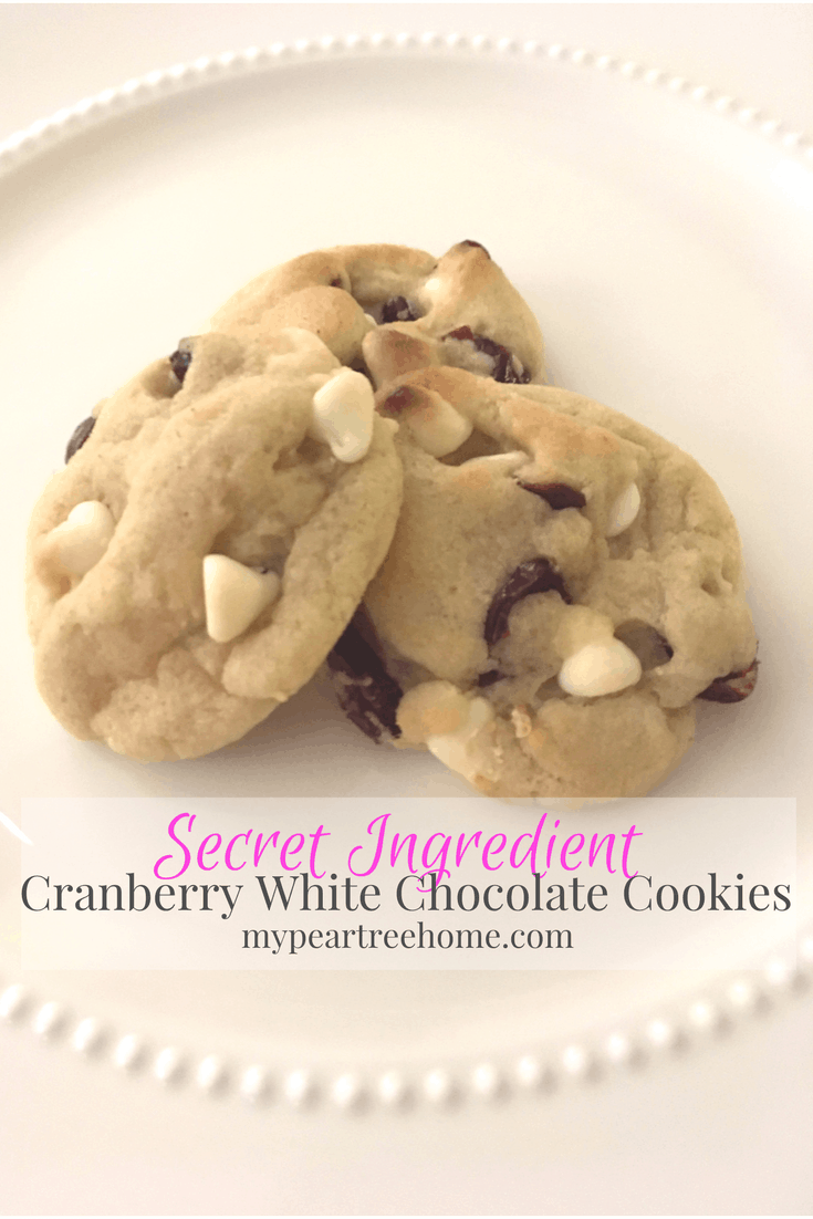 Want a delicious cookie recipe that will please your ENTIRE family? This one is the perfect combo of sweet and tart and the soft texture practically melts in your mouth. Click to the post to see the recipe!