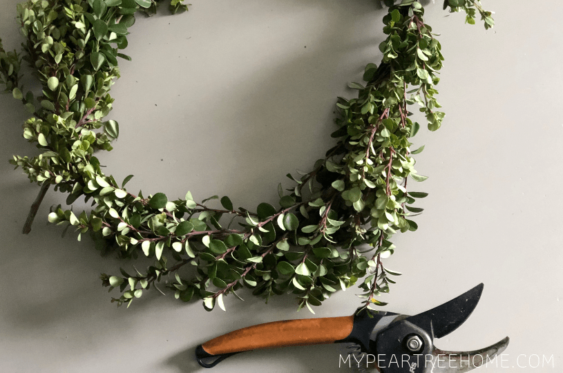materials needed to make a boxwood wreath