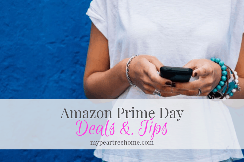 "It's that time again! Prime Day is the ""Black Friday"" of Amazon. Click to the post to see the deals and how to get the most out of Amazon Prime Day."