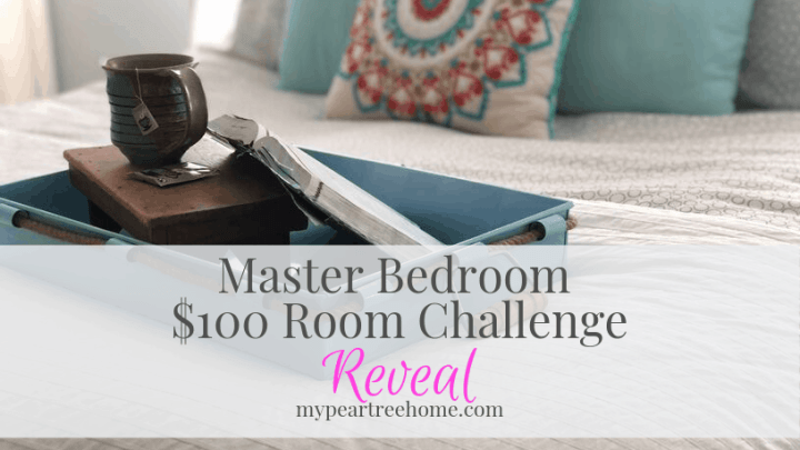 Master Bedroom: $100 Room Challenge REVEAL