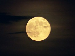 Supermoon_MyPerdidoKey_com_08-10-14-18