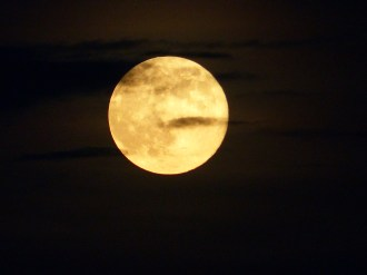 Supermoon_MyPerdidoKey_com_08-10-14-20