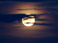 Supermoon_MyPerdidoKey_com_08-10-14-26