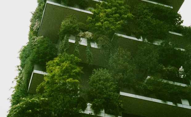 white building exterior surrounded trees and gardens