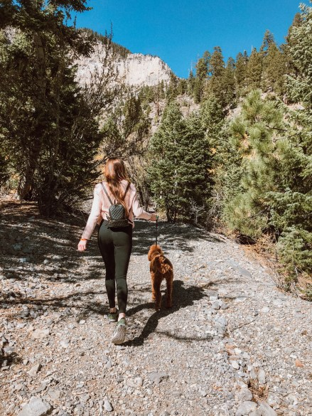 Hiking in Mount Charleston in Las Vegas