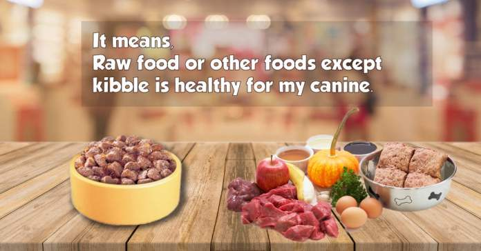 It means raw food or other foods except kibble is good for my canine