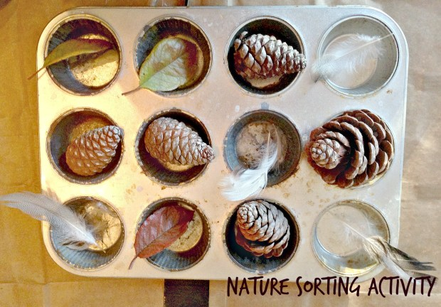 nature-sorting-activity