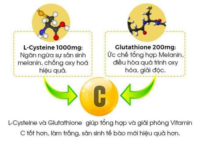 Thành phần chính của AZ White là L-cystine. Hoạt chất L – Cystine chứa gốc -SH