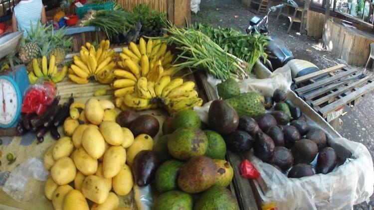 Cheap, cheap organic fruits and veggies!