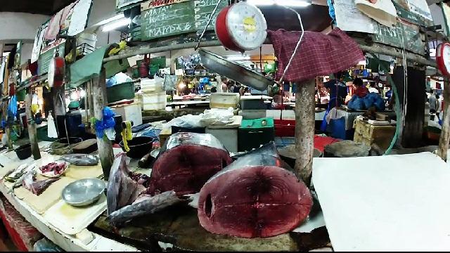 Blue fin tuna