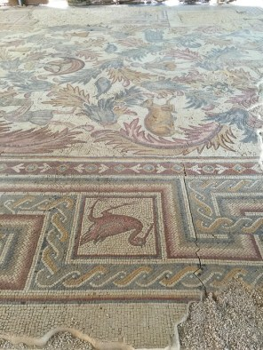 Mosaic floor at Mount Nebo.Visit Jordan on a family holiday - mycustardpie.com