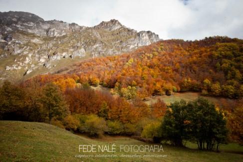 FN_2013_Cantabria_0178