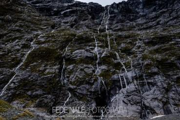 mpyh_2017_new-zealand_milford-road_0024