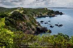 mpyh_2017_new-zealand_waheke-island_0022