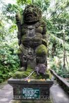 MPYH_2017_Indonesia_Ubud_Monkey Forest_0002