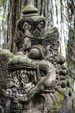 MPYH_2017_Indonesia_Ubud_Monkey Forest_0005