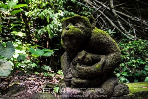 MPYH_2017_Indonesia_Ubud_Monkey Forest_0008