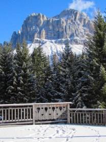 Alpenpanorama (1 von 1)