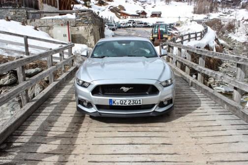 Mustang Lucknerhaus