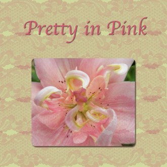 PRETTY IN PINK … and a Giveaway