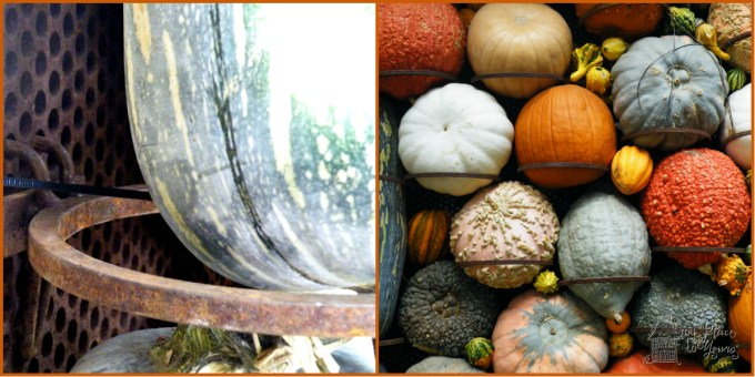 pumpkin collage DIY