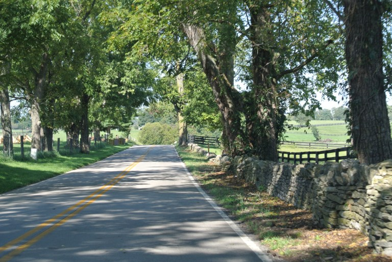 A country road in central Kentucky.