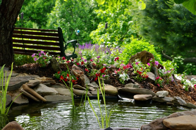 A garden bench next to a pond and red and purple flowers.