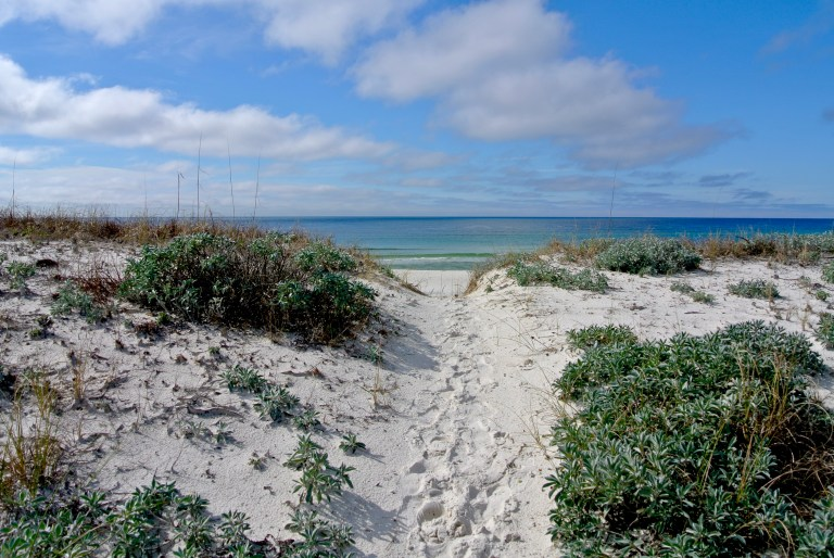 A white sandy path through dunes and the turquoise waters of the Gulf of Mexico.