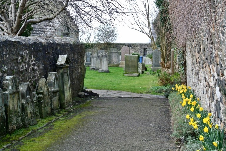 A daffodil and gravestone lined path leading to a graveyard.