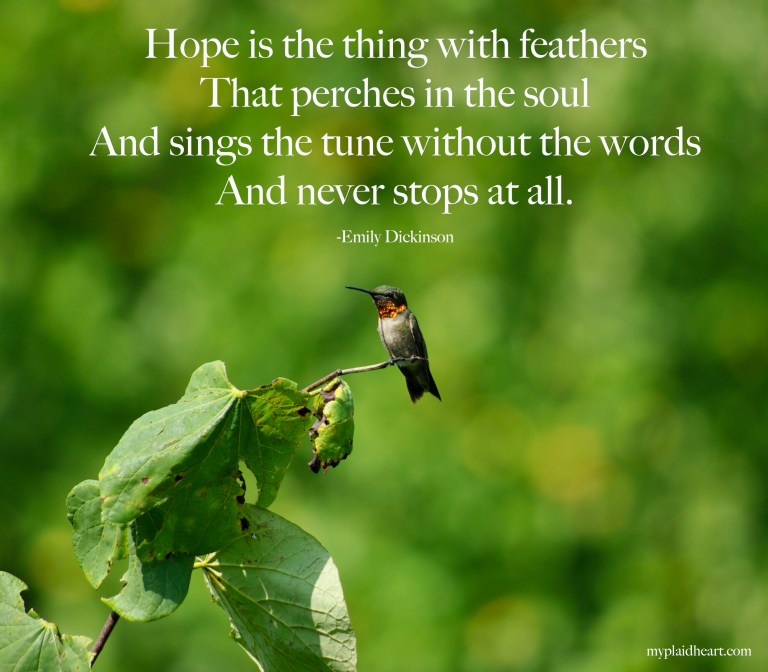 Hope is the thing with feathers that perches in the soul.  And sings the tune without the words, and never stops at all.  Emily Dickinson