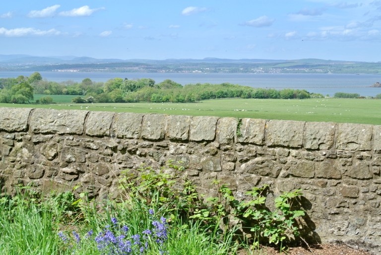 A stone wall, green grass, and the Firth of Forth.