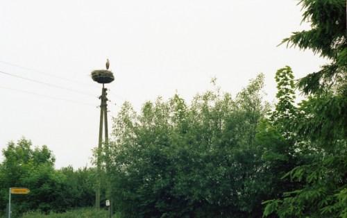 Insel Rügen 012