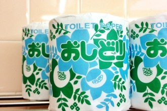 A traveller's guide to japanese toilets
