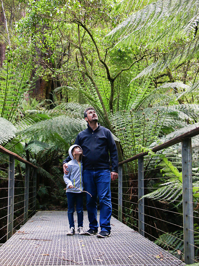 Otway lorne nature walk family things to do - Top 10 Things to See + Do with kids , Great Ocean Road AUSTRALIA mypoppet.com.au