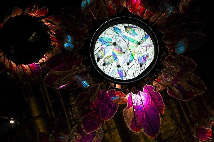 EPIPHANY'S GENESIS , Lighttime Science works