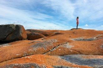 Tasmania Driving holiday intinerary