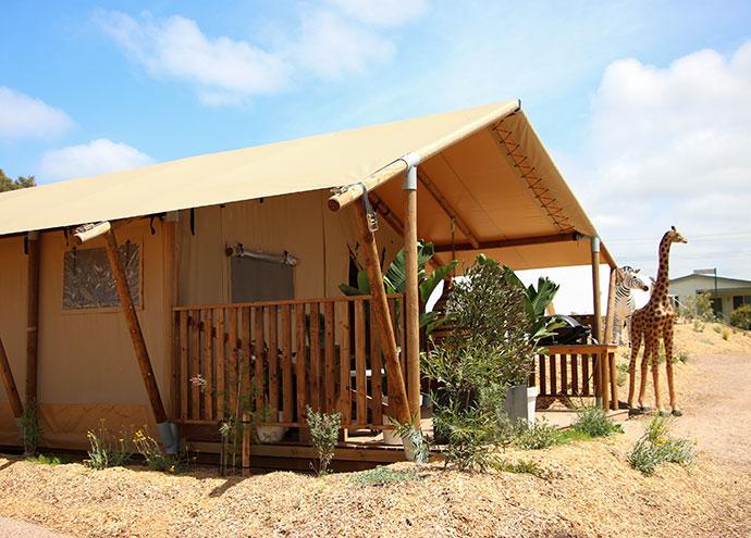 Safari Tent Glamping Great Ocean Road Anglesea Victoria - Hotel Review - mypoppet.com.au