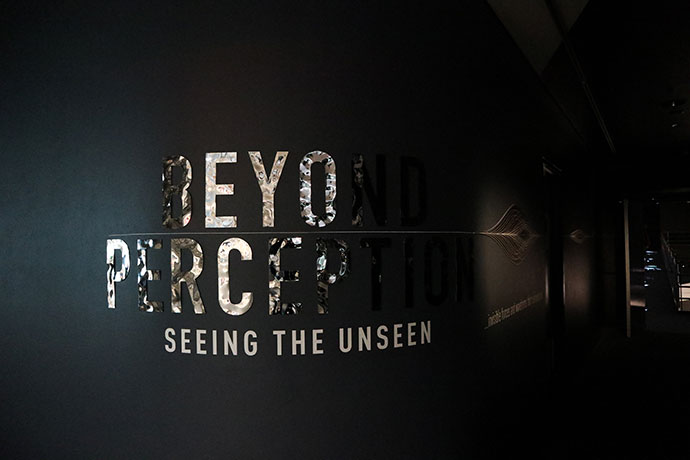 Beyond Perception Exhibition Sciencworks Melbourne - Mypoppet.com.au