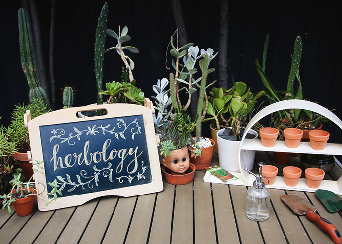 herbology class - harry potter party ideas