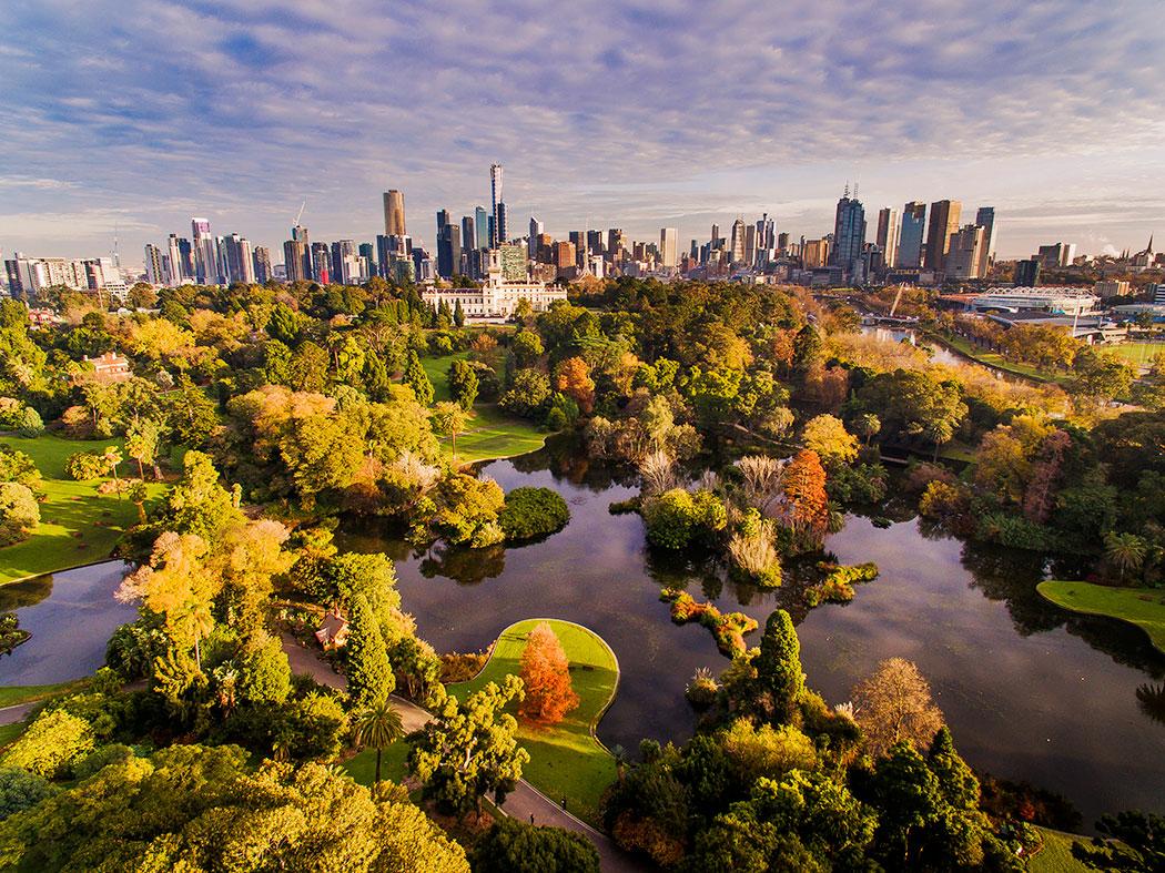 Botanical Gardens Melbourne Autumn