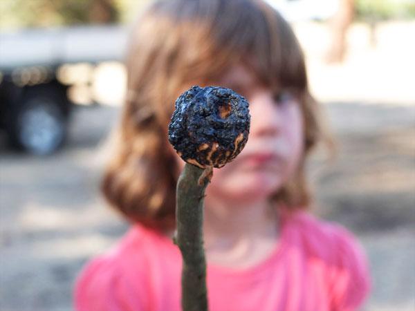 marshmallow fail burnt