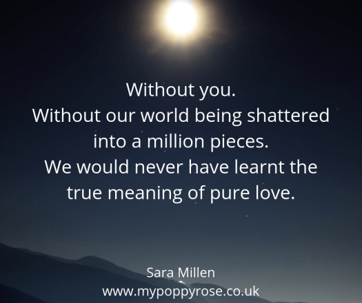 Quote: Without you. Without our world being shattered into a million pieces. We would never have learnt the true meaning of pure love.
