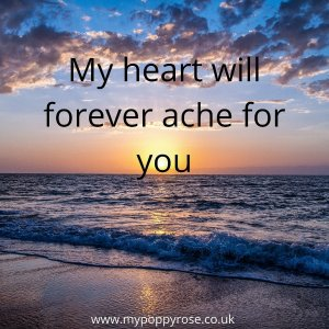 Quote: My heart will forever ache for you.