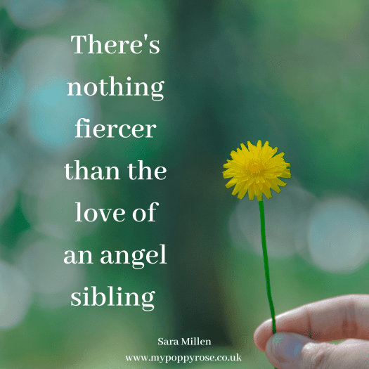 Angel Sibling Quote: There's nothing fiercer than the love of an angel sibling.