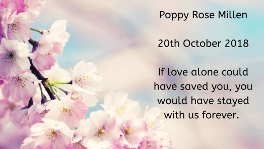 Remembering our babies: Poppy Rose Millen