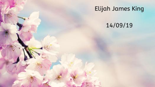 Remembering our babies: Elijah James King.