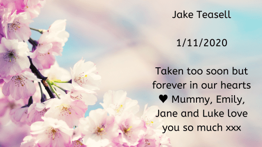 Remembering our babies: Jake Teasell.