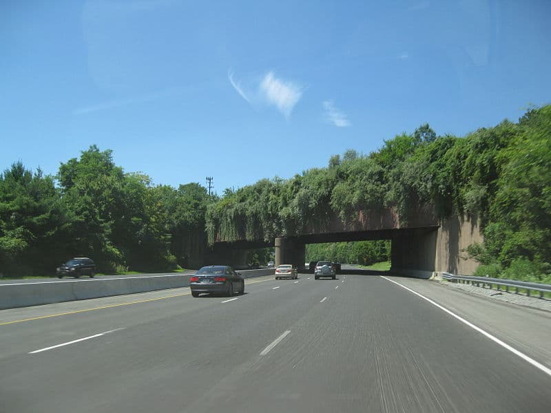 800px-Interstate_78_-_New_Jersey_Watchung_Reservation