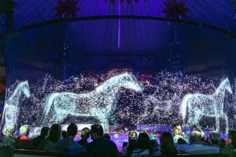 animal-holograms-circus-roncalli-germany-2-5cf652b990d82__700